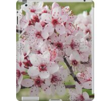 Spring Blossoms #4  iPad Case/Skin