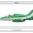 Hawk Saudi 2 by Claveworks