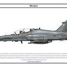 Hawk South Africa 1 by Claveworks