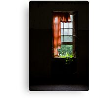 To Wade Through Darkness Canvas Print