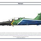 Hawk South Africa 2 by Claveworks