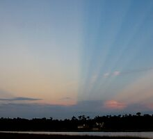 Anti-crepuscular rays   by Jonicool