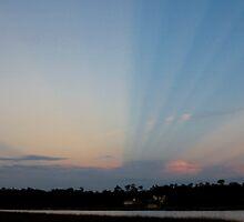 Anti-crepuscular rays   by Jonicool