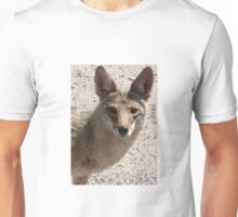 Coyote looking at you Unisex T-Shirt