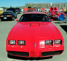 1979 Pontiac Firebird Trans Am by kenmo