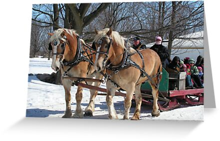 Horse and Buggy by Danielle Girouard