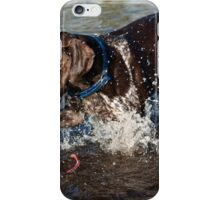 Splashtastic German Shorthaired Pointer iPhone Case/Skin