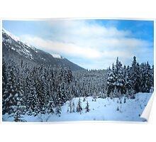 Rockies #3 Poster