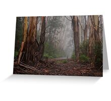 Giants In The Mist - Mount Wilson NSW Australia - The HDR Experience Greeting Card