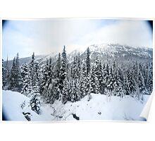 Rockies #4 Poster