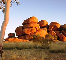 Sunset colours on the Devil's Marbles and ghost-gum by Tim Coleman