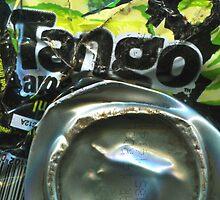 Tango Apple - Crushed Tin by Jovan Djordjevic