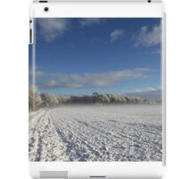 Wintersnow + Mill iPad Case/Skin