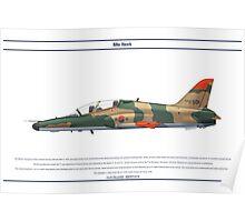 Hawk South Korea 1 Poster