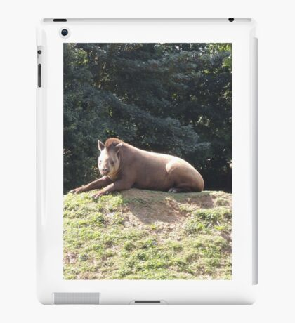 Tapir To The Top and Smile iPad Case/Skin