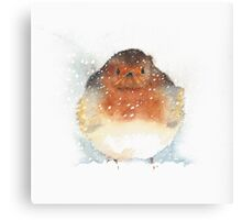 Angry Robin  Canvas Print