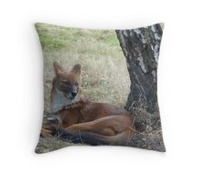 The Whistling Hunter At Rest Throw Pillow