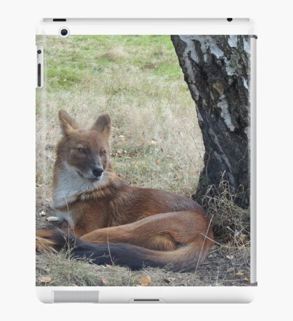 The Whistling Hunter At Rest iPad Case/Skin