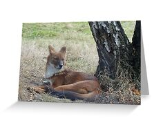 The Whistling Hunter At Rest Greeting Card