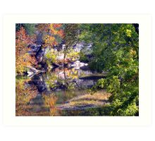 War Eagle Reflection  Art Print