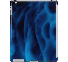 Arctic #3 iPad Case/Skin