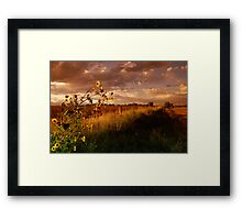 Colorado Farm Land III Framed Print