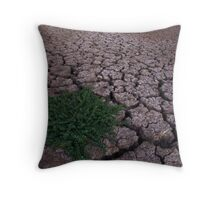Drying up....... Throw Pillow