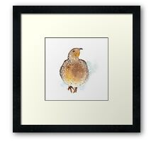 Partridge in the Snow Framed Print