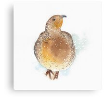 Partridge in the Snow Canvas Print