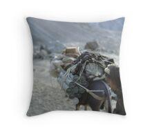 WEAPONS CARAVAN, AFGHANISTAN Throw Pillow