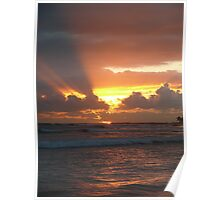Morning Rays Poster