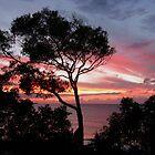 Princeville, Kauai Sunset  by JessPeterson