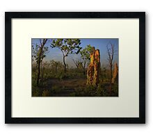 Termite Mound - Northern Territory AUS Framed Print