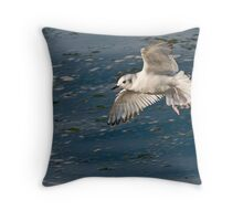 Small Gull Throw Pillow
