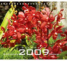 Orchids Calendar 2009 - on sale by Joakim Leroy
