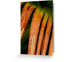 Southern Vegetation Greeting Card