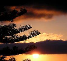 Coledale Sunrise by Jessica Millman