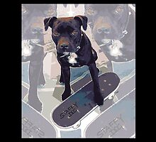 SK8 Staffy Dog by amanda metalcat dodds