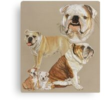English Bulldog Collage Canvas Print