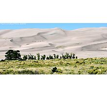 #529    Great Sand Dunes Of Colorado Photographic Print