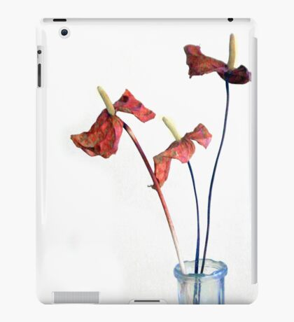 On the Last Leg iPad Case/Skin