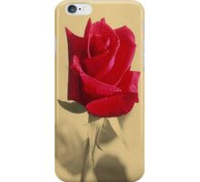 Red Rose Flower Isolated on Sepia Background iPhone Case/Skin