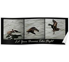 Let Your Dreams Take Flight Poster