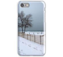 Winter on Lake Huron iPhone Case/Skin