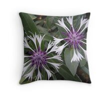 What Am I? Solved by cvail73 Throw Pillow