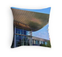 reflected past Throw Pillow