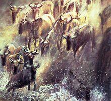 Migration by Angela Drysdale