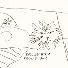 Sketched Cats 5 by Gabriele Maurus