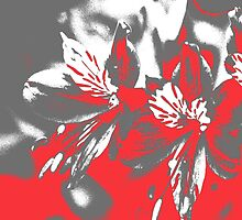 Homescape - grey and red orchid 2 by Paul Davenport