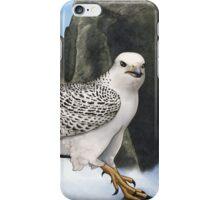 Fannar iPhone Case/Skin